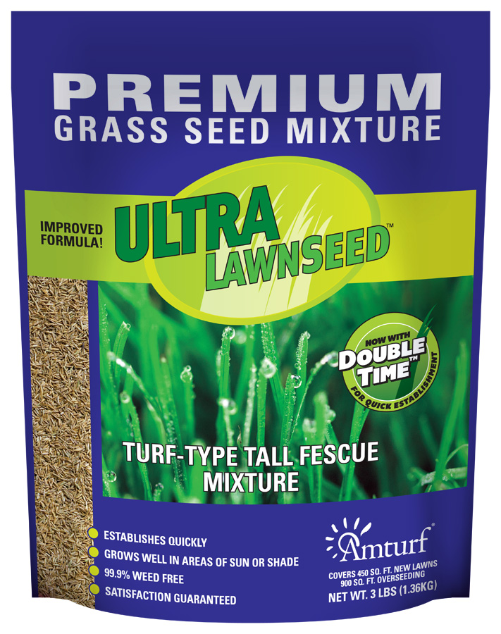 turf-type-tall-fescue